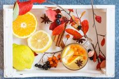 鼠李热的饮料用柠檬和曲奇饼 免版税图库摄影