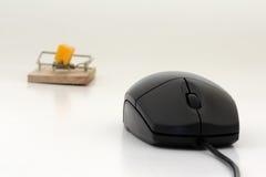 鼠标捕鼠器 库存图片
