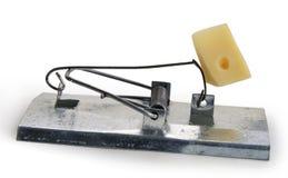 鼠标陷井 库存照片