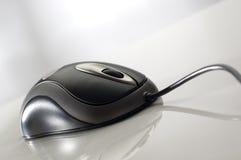 鼠标 免版税图库摄影