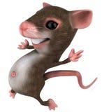 鼠标 库存图片