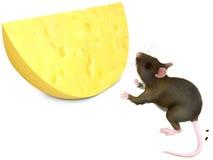 老鼠和chese 免版税图库摄影