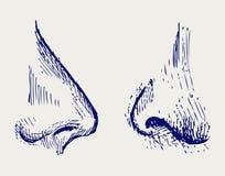 鼻子 库存例证