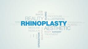 鼻整形术审美秀丽诊所医疗保健化妆医院创造性的鼻子操作昂贵的生气蓬勃的词云彩 向量例证