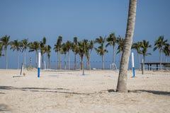 齐射球在棕榈热带海滩阿曼salalah souly海湾之间 免版税库存照片