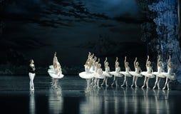 齐格菲由罗伯特男爵诅咒Ojta公主见面了,她是一只天鹅自白天,但是在晚上将是女孩芭蕾天鹅湖 免版税库存照片