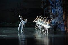 齐格菲由罗伯特男爵诅咒Ojta公主见面了,她是一只天鹅自白天,但是在晚上将是女孩芭蕾天鹅湖 库存图片