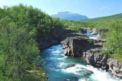 水齿轮阿比斯库国家公园国家公园瑞典语拉普兰 免版税库存照片