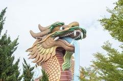 龙卫兵雕象 免版税图库摄影