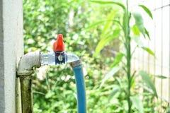 龙头连接用橡胶管子和青苔在水管附近 库存图片