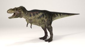 暴龙恐龙 库存照片