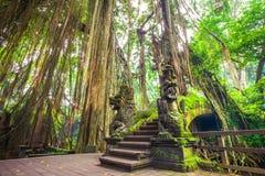 龙桥梁在猴子森林, Ubud巴厘岛印度尼西亚里 免版税库存照片