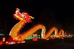龙汉语灯节 图库摄影