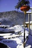 黑龙江省的-雪村庄双峰森林农场 免版税库存照片