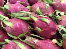 龙热带泰国果子 库存照片
