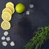 龙篙用柠檬、糖和石灰 库存照片