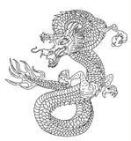 龙纹身花刺传染媒介 库存图片