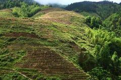 龙脊大阳台,桂林 免版税库存照片