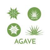 龙舌兰植物绿色花商标五颜六色的传染媒介例证 图库摄影
