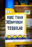 300龙舌兰酒在sayulita镇,在punta mita附近,墨西哥 免版税库存图片