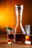 龙舌兰酒威士忌酒 免版税库存照片