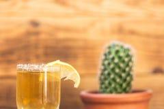 龙舌兰酒用柠檬和仙人掌在木背景 库存照片