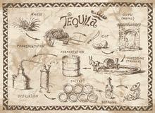 龙舌兰酒项目 库存照片