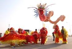 龙舞蹈,舞狮 图库摄影