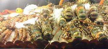 龙虾和国王大虾 免版税库存照片