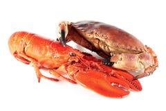 龙虾和螃蟹 库存照片