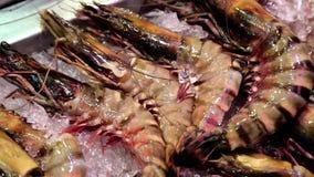 龙虾和水产品谎言在冰 股票视频