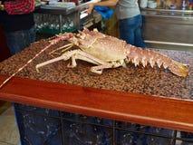 龙虾新鲜的海鲜贝类食物在餐馆 免版税库存照片