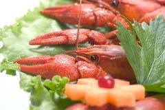 龙虾沙拉 库存图片