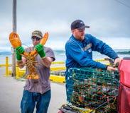 龙虾渔夫,纽芬兰 库存照片