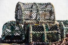 龙虾篮子 库存图片