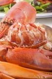 龙虾肉和壳用沙拉 免版税图库摄影