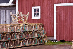 龙虾陷井和两只全部赌注猫在棚子,爱德华王子岛,加拿大前面 免版税图库摄影