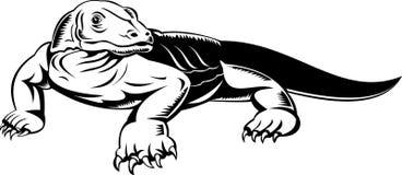龙komodo蜥蜴监控程序 库存图片