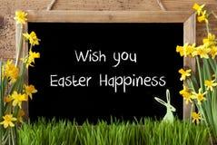 水仙,兔宝宝,文本愿望您复活节幸福 免版税库存照片
