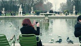巴黎,法国- 2016年12月, 31日 做照片的妇女美丽的池塘在公园反对弗累斯大转轮 普遍 免版税库存照片