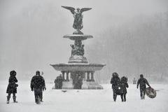 1/23/16,纽约:在冬天风暴乔纳斯期间,游人和本机冒险入中央公园 免版税库存照片