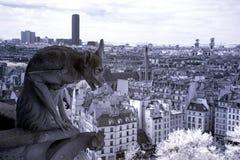 巴黎,面貌古怪的人Notre Dame最著名所有虚构物 库存图片
