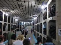 27 08 2016年, Milestii Mici,摩尔多瓦:最大的酒的细节 免版税库存照片