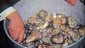 1965年:炫耀罐牡蛎的人将被烹调 股票视频