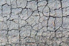 ?象地震的背景 免版税图库摄影