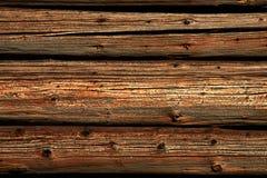 δάσος ανασκόπησης Στοκ εικόνα με δικαίωμα ελεύθερης χρήσης