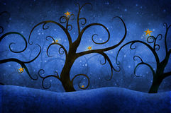 Δέντρα με τα αστέρια Στοκ Εικόνες