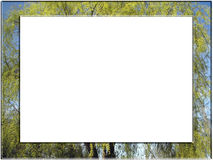 δέντρο πλαισίων Στοκ Εικόνες