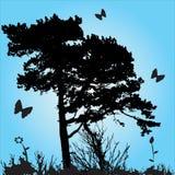δέντρο σκιαγραφιών Στοκ φωτογραφίες με δικαίωμα ελεύθερης χρήσης