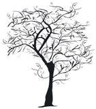 δέντρο σκιαγραφιών Στοκ φωτογραφία με δικαίωμα ελεύθερης χρήσης